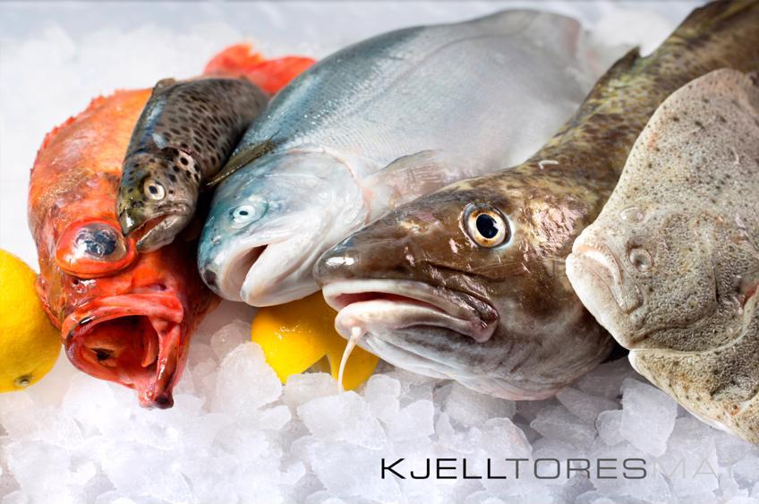 Fisk- & fileteringskurs hos KJELLTORESMAT